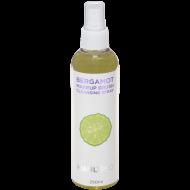 Экспресс-очиститель с маслом бергамота для кистей Manly PRO КО17 250мл: фото